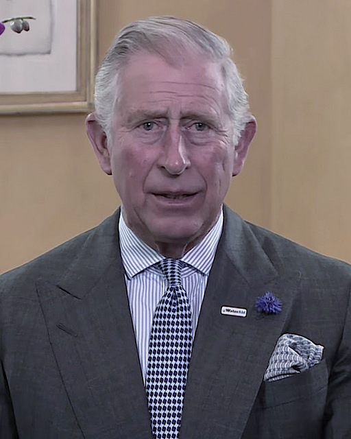 Prince-Charles-Patterns-The-Journal-of-Style-1